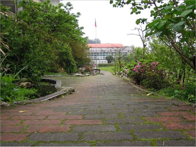 綠意之下,學校同時孕育一個小型的生態環境,是一座戶外的自然課教室~(我因擔任晨光爸爸的機會,剛好看到 Alice 班級在戶外上自然課,觀察生態)