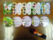 我們的第 3 站行程介紹蝴蝶 & 蜻蜓。校方贈送 2 本的蝴蝶、蜻蜓手冊,內容全由學校師生自行彙編印製,十分詳盡~