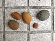 手上僅有幾顆從花蓮七星潭帶回的小石子,由於木柵的石材行可能休息,我便載著 2A 直接到外木山海邊撿回幾枚鵝卵石。洗淨晾乾中~