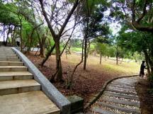 步上「情人湖」的的階梯與石子路,在樹林裡慢步頗有情調~