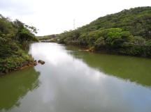 由「情人湖」環湖步道一覽「情人湖」全景~