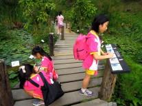 4 個小女生在「水生植物區」記錄她們觀察不一樣的植物~