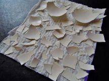 晾乾洗淨、撕除蛋膜後的蛋殼~